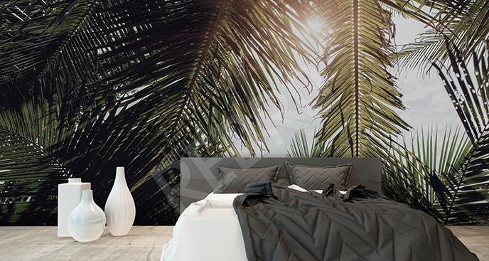 Tapeta palmowy zagajnik