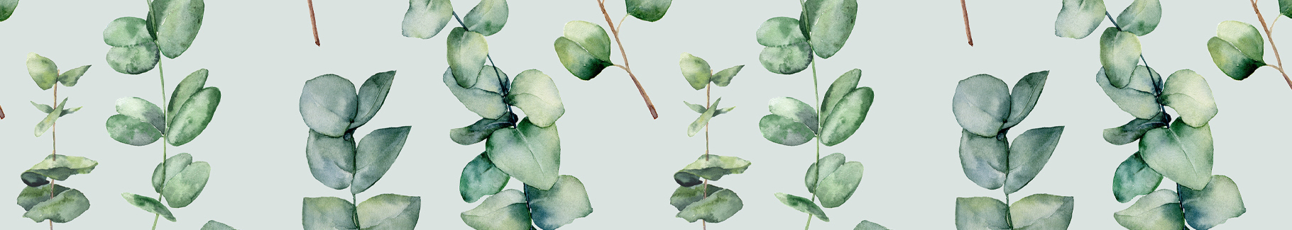 Fototapeta zielony las tropikalny